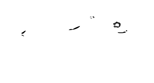 Symmetry Salon